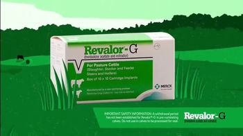 Merck Animal Health Revalor-G TV Spot, 'Right Time' - Thumbnail 8