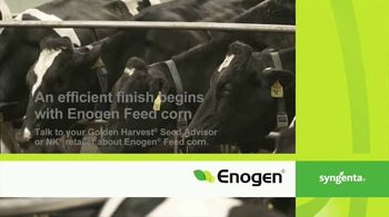 Syngenta Enogen Feed Corn TV Spot, 'Dairy Producer in Franklin, CT' - Thumbnail 9