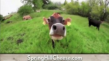 Petaluma Creamery TV Spot, 'Flavors: Happy Cows' - Thumbnail 3