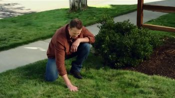 Pennington Lawn Booster  TV Spot, 'Lush Lawn'