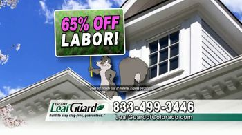 LeafGuard of Colorado Spring Blowout Sale TV Spot, 'Avoid Risk of Injury' - Thumbnail 4