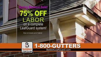 Beldon LeafGuard Spring Blowout Sale TV Spot, 'Flexible Installation Schedules' - Thumbnail 4