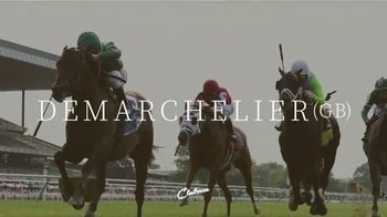 Claiborne Farm TV Spot, 'Demarchelier's Foals' - 69 commercial airings