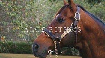 Claiborne Farm TV Spot, 'Algorithms' Foals' - 68 commercial airings
