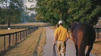 Claiborne Farm TV Spot, 'Algorithms' Foals' - Thumbnail 2
