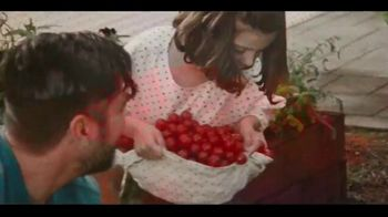 Miracle-Gro Performance Organics TV Spot, 'No Compromise: Order Online' Song by Alice Merton - Thumbnail 2