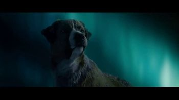 The Call of the Wild Home Entertainment TV Spot - Thumbnail 5