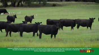 Cattle Parasite Control thumbnail