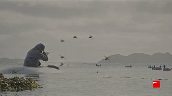 Benelli BE.S.T. TV Spot, 'Impervious to the Elements' - Thumbnail 6