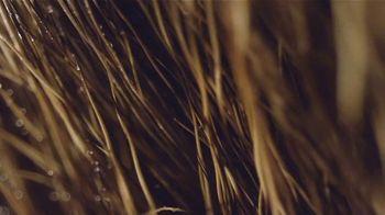 Bushnell Banner 2 TV Spot, 'Sharpest Optics' - Thumbnail 1