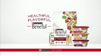 Purina Beneful Superfood Blend TV Spot, 'Nutrient-Rich: More Recipes' - Thumbnail 9