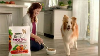 Purina Beneful Superfood Blend TV Spot, 'Nutrient-Rich: More Recipes'