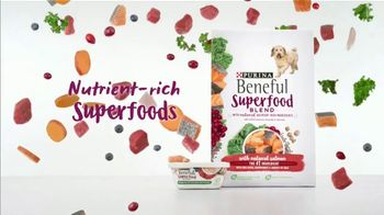 Purina Beneful Superfood Blend TV Spot, 'Nutrient-Rich: More Recipes' - Thumbnail 3