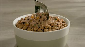 Purina Beneful Superfood Blend TV Spot, 'Nutrient-Rich: More Recipes' - Thumbnail 5