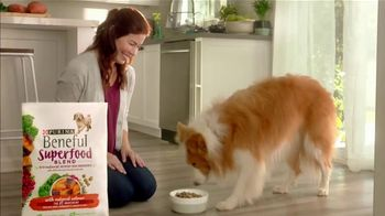 Purina Beneful Superfood Blend TV Spot, 'Nutrient-Rich: More Recipes' - Thumbnail 6