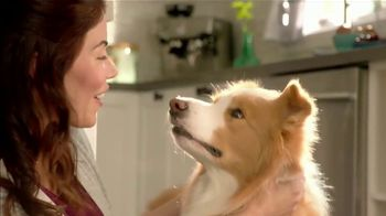 Purina Beneful Superfood Blend TV Spot, 'Nutrient-Rich: More Recipes' - Thumbnail 7