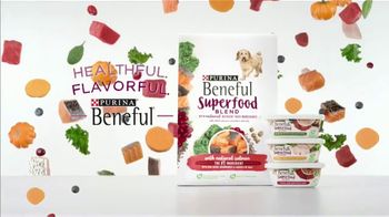 Purina Beneful Superfood Blend TV Spot, 'Nutrient-Rich: More Recipes' - Thumbnail 8