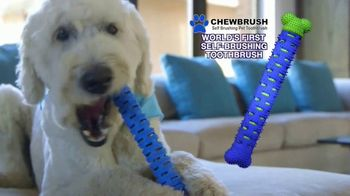 Chewbrush TV Spot, 'Try Brushing Your Pet's Teeth'