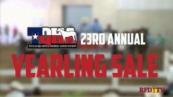 Superior Livestock Auction Yearling Sale TV Spot, 'Texas Quarter Horse Association: Premier' - Thumbnail 1