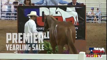 Superior Livestock Auction Yearling Sale TV Spot, 'Texas Quarter Horse Association: Premier' - Thumbnail 3