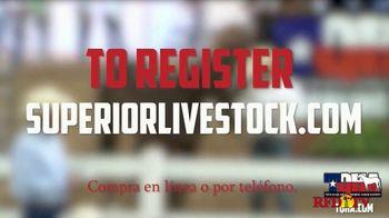 Superior Livestock Auction Yearling Sale TV Spot, 'Texas Quarter Horse Association: Premier' - Thumbnail 6