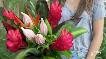 The Bouqs Company TV Spot, 'Farm Fresh Flowers: 25 Percent Off in June'