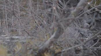 Realtree Timber TV Spot, 'Versatility' - Thumbnail 1