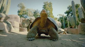 San Diego Zoo TV Spot, 'Keeping Wildlife Safe: Now Open'