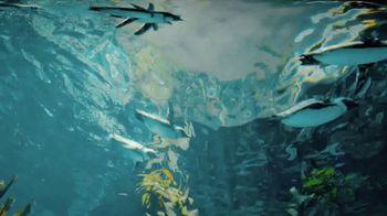 San Diego Zoo TV Spot, 'Keeping Wildlife Safe: Now Open' - Thumbnail 3