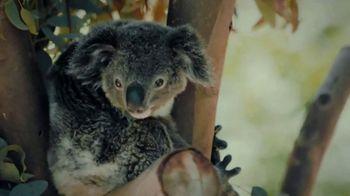 San Diego Zoo TV Spot, 'Keeping Wildlife Safe: Now Open' - Thumbnail 7