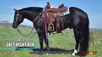 Superior Livestock Auction TV Spot, 'Twombly Performance Horse Sale' - Thumbnail 3