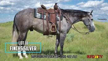 Superior Livestock Auction TV Spot, 'Twombly Performance Horse Sale' - Thumbnail 4