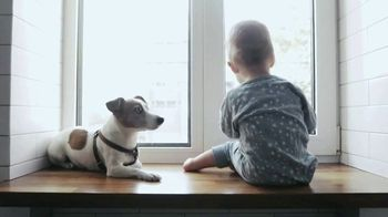 Purina TV Spot, 'To Our Pets, Thank You' - Thumbnail 7