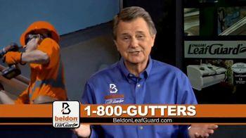 Beldon LeafGuard TV Spot, 'Eliminating Health Hazards: Free Leaf Blower' - Thumbnail 4