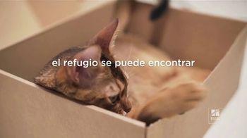 Hill's Pet Nutrition TV Spot, 'El refugio se puede encontrar en lugares inesperados' [Spanish] - Thumbnail 2