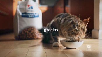 Hill's Pet Nutrition TV Spot, 'El refugio se puede encontrar en lugares inesperados' [Spanish] - Thumbnail 5