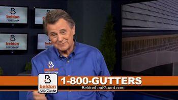 Beldon LeafGuard TV Spot, 'Don't Get Bit' - Thumbnail 1