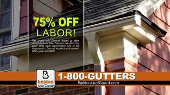 Beldon LeafGuard TV Spot, 'Factory on Wheels: 75 Percent Off Labor' - Thumbnail 3