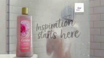 Caress Daily Silk TV Spot, 'Inspiration' - Thumbnail 9