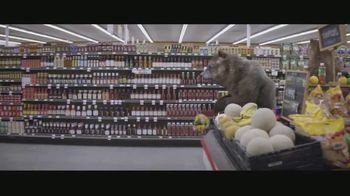E*TRADE TV Spot. 'Bear Market' - Thumbnail 3