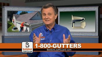 Beldon LeafGuard TV Spot, 'Eliminate Problems: 75 Percent Off Labor' - 1 commercial airings