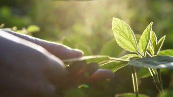 Syngenta NK Seeds TV Spot, 'We're Back' - Thumbnail 3