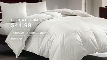 Macy's Venta de Un Día TV Spot, 'Juegos de cama, edredón y Martha Stewart' [Spanish] - Thumbnail 3