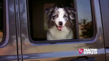 Tractor Supply Co. Pet Appreciation Week TV Spot, 'Bandit'