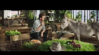 Farm Rich TV Spot, 'A Lesson in Snack Math'