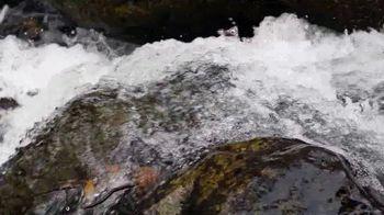Visit Gatlinburg TV Spot, 'The Mountains are Calling: This Fall' - Thumbnail 9