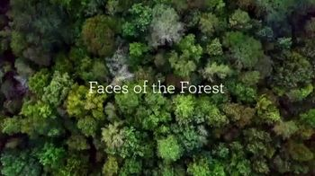 Paper and Packaging Board TV Spot, 'Faces of the Forest: Gray Family' - Thumbnail 1
