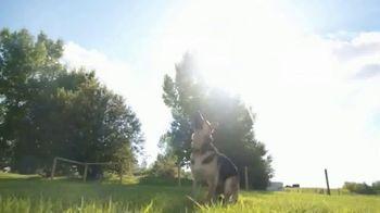 Camping World TV Spot, 'Your Pets' - Thumbnail 4