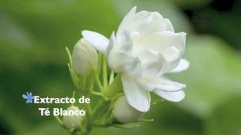 Teatrical Pro-Aclarant TV Spot, 'Rostro sin manchas' [Spanish] - Thumbnail 4