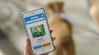 Chewy.com TV Spot, 'Running Errands' - Thumbnail 8